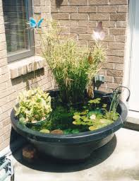 shocking ideas container water garden brilliant 1000 images about