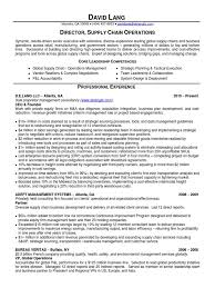 Resume For Supply Chain Executive Download Director It Operations Pmo In Atlanta Ga Resume Yasin