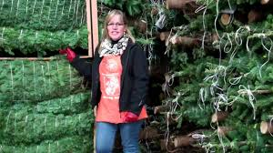 all about noble fir christmas trees the home depot youtube