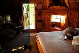 la chambre dans les arbres picture of chateau de l enclos brulon