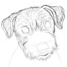 25 unique dog drawing tutorial ideas on pinterest how to draw