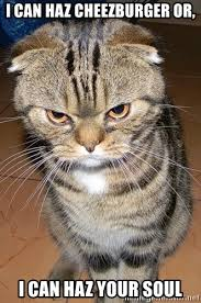 I Can Haz Meme Generator - i can haz cheezburger or i can haz your soul angry cat 2 meme
