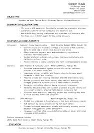 customer service resumes exles free resume functional summary some resume like summary on resume exle