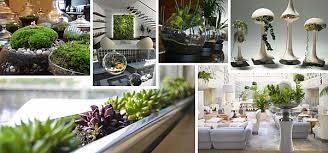 Indoor Gardening Ideas Indoor Gardening Ideas To Beautify Your Space