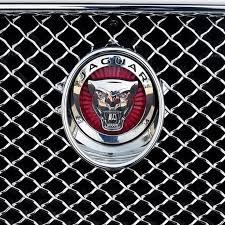 new black 3d leopard logo bonnet emblem sticker grill