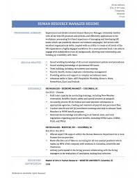 resume examples backgrounds wellsuited ideas hr manager resume