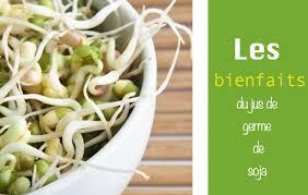 cuisiner les germes de soja comment cuisiner les germes de soja frais recette comment cuire des