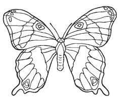 dessin ã colorier de papillon sur une fleur a imprimer