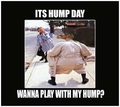 Dirty Hump Day Memes - pre hump day memes memes pics 2018