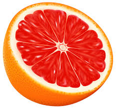 grapefruit clipart half orange pencil and in color grapefruit
