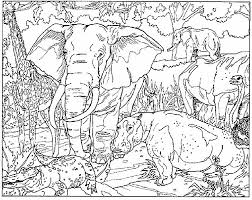 masjas leopards coloring page made by masja van den berg