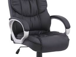 Back Pain Chair Cushion Office Chair Fellowes Professional Series Back Support For