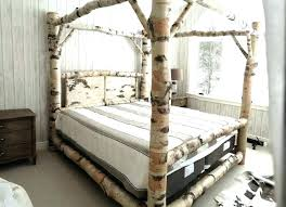 Where Can I Buy A Cheap Bed Frame Cheap Canopy Beds Cheap King Size Canopy Bed Frame Image Of King