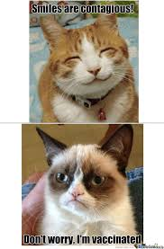 Smiling Cat Meme - when grumpy cat and smile cat meets by catalyxx meme center