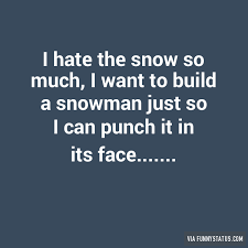 Hate Snow Meme - i hate the snow so much i want to build a snowman funny status