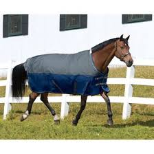 Horse Rug Racks For Sale Horse Blankets Turnouts Fly Sheets U0026 Stable Blankets Dover
