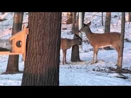 best 25 pvc deer feeder ideas on best deer feeder
