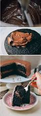 the 25 best chocolate mousse cake ideas on pinterest chocolate