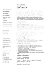 cio resume executive resumes examples