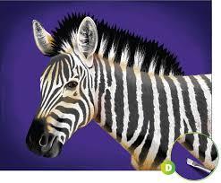 acrylic painting safari zebra