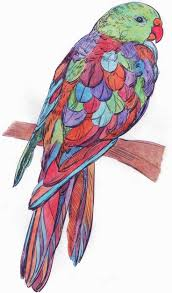 273 best finished coloring pages for adults images on pinterest