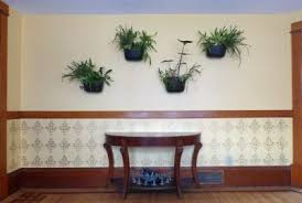 creating indoor interest with living wall planters gardening