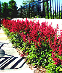 Lava Rock Landscaping by Own Garden Part Lava Rock Landscaping Ideas Red Ideasgallery Of Vs