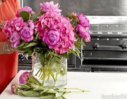 Peonies Flower The 25 Best Peonies Season Ideas On Pinterest Wedding Flowers