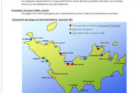 Saint Barts Map by
