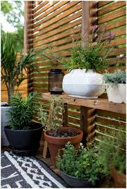 Potted Plants For Patio Backyards Stupendous Privacy Screen For Backyard Backyard Ideas