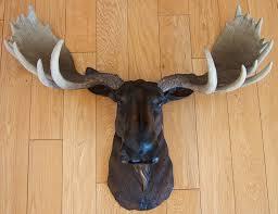 Moose Themed Home Decor by Modern Ideas Moose Wall Decor Classy Design Near And Deer Head