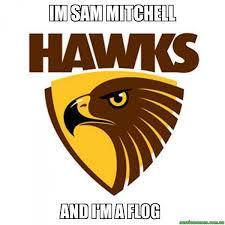Mitchell Meme - im sam mitchell and i m a flog hawthorn hawks aussie memes