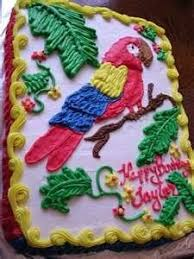 parrot cake template google search odins cake pinterest