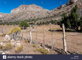 Arizona Strip Map by Arizona Strip Stock Photos U0026 Arizona Strip Stock Images Alamy