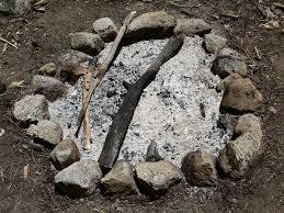 wood ash wikipedia