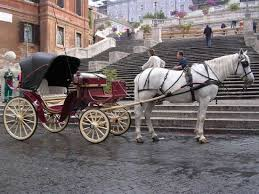bianchi carrozze carrozza con cavalli jpg