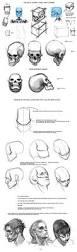 best 25 anatomy ideas on pinterest anatomy reference