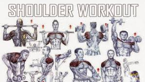 Great Shoulder - tune1st a free resource fitness fitness guidance