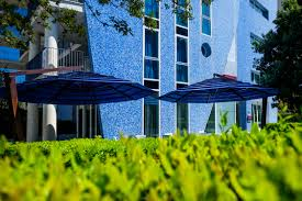 free images tree grass cafe architecture lawn house