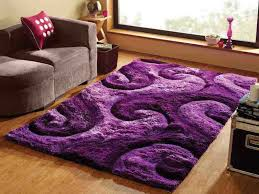 Purple Area Rugs Beautiful Shag Purple Area Rug For Room Purple Area Rugs