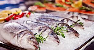 cuisiner poisson congelé mieux connaître les poissons mgc prévention santé