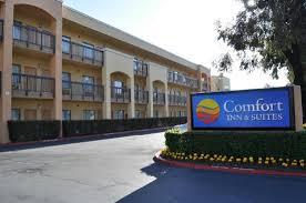 Comfort Inn Sfo Standard Room Picture Of Comfort Inn U0026 Suites San Francisco