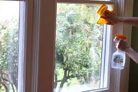 Cleaning Windows With Vinegar 31 Ways To Use Vinegar For Your Home Garden U0026 Car The Daring