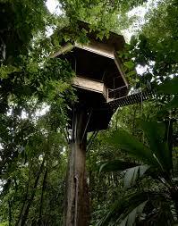 Treehouse Living Real Estate At Finca Bellavista Treehouse Community In Costa