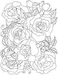 coloring pages with roses 136 best roses to color images on pinterest coloring pages