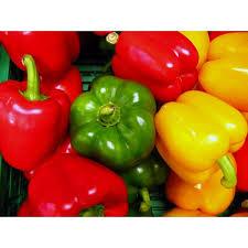 comment cuisiner les poivrons rouges comment choisir les poivrons rouges verts ou jaunes