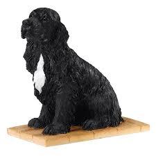 bfa dogs pups cocker spaniel sitting black co uk