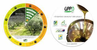 chambre d agriculture 34 uppo 34 union des producteurs et professionnels de l olivier de l