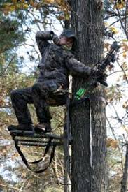 how to set up a tree stand archery bowhunting and stands