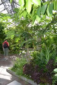united states botanic garden u2013 washington d c nature spots